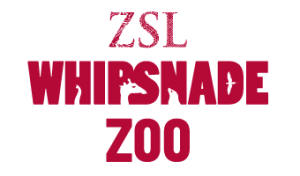 Whipsnade Zoo discount code